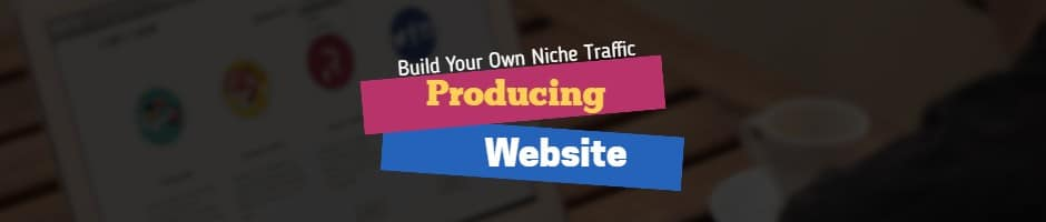 Build Your Own Niche Traffic Producing Website